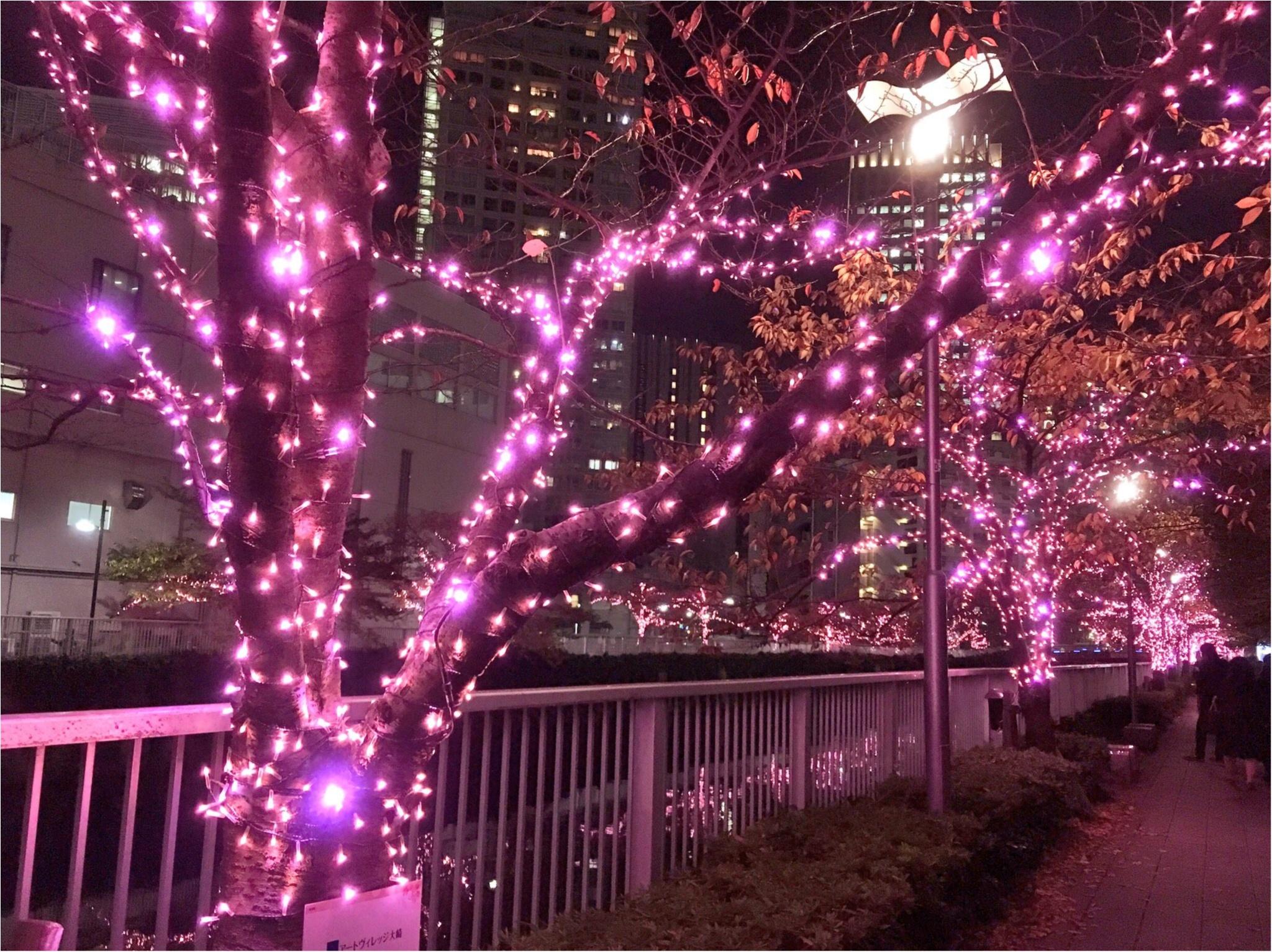 『目黒川』に『冬の桜』が咲きました(*°○°*)♡最新の『環境にやさしいイルミネーション』って???_4