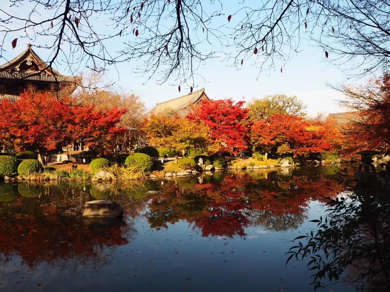 鎌倉&京都のおすすめ女子旅♪ ピクサー新幹線に乗ってみた♡【今週のMOREインフルエンサーズライフスタイル人気ランキング】_1