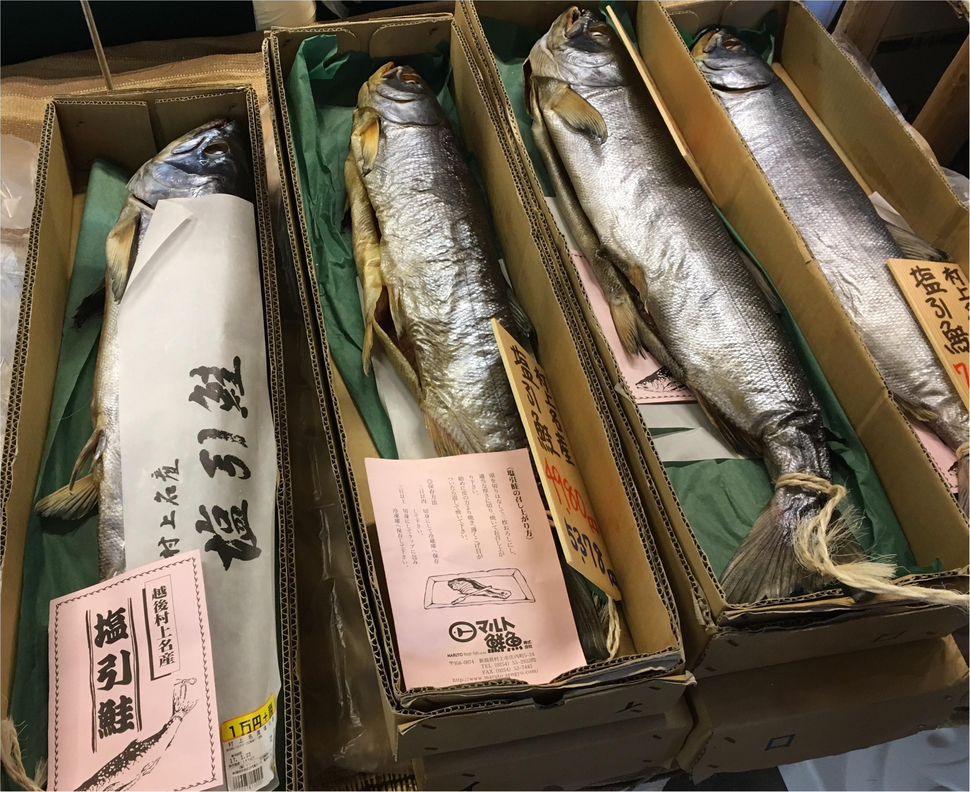 【旅行▶グルメ】もう東京駅でも食べられないあのアイスから定番B級グルメや海の幸まで♡新潟のオススメグルメ_5