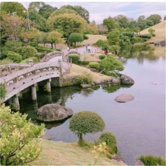 【動画で紹介!】熊本市内に発見! SNS映えする美しい庭園「水前寺成趣園」でリフレッシュ!【#モアチャレ 熊本の魅力発信!】
