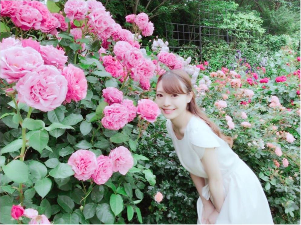 女の子の憧れ♡バラ園で素敵なひと時を、、(*^ω^*)_15