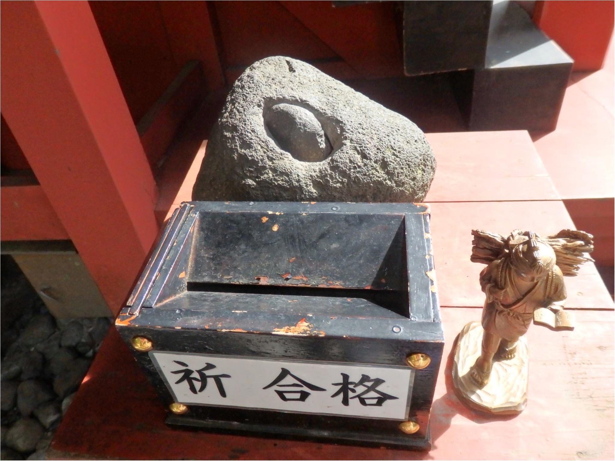 【知らなかった!】日本一楽しめる神社へ潜入してみた_23