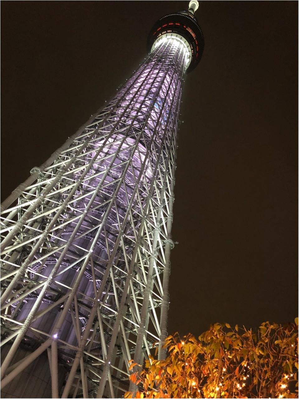 東京スカイツリーに登らずとも楽しめる!ピンクのお花のツリーが可愛いイルミネーション!!_1