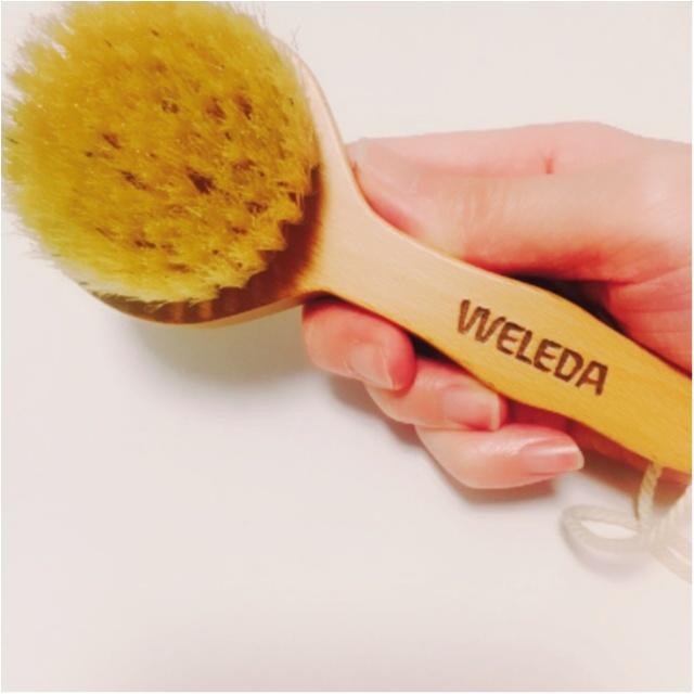 ヴェレダのNo. 1オイル、ホワイトバーチオイルの限定セットはブラシ付き!_3