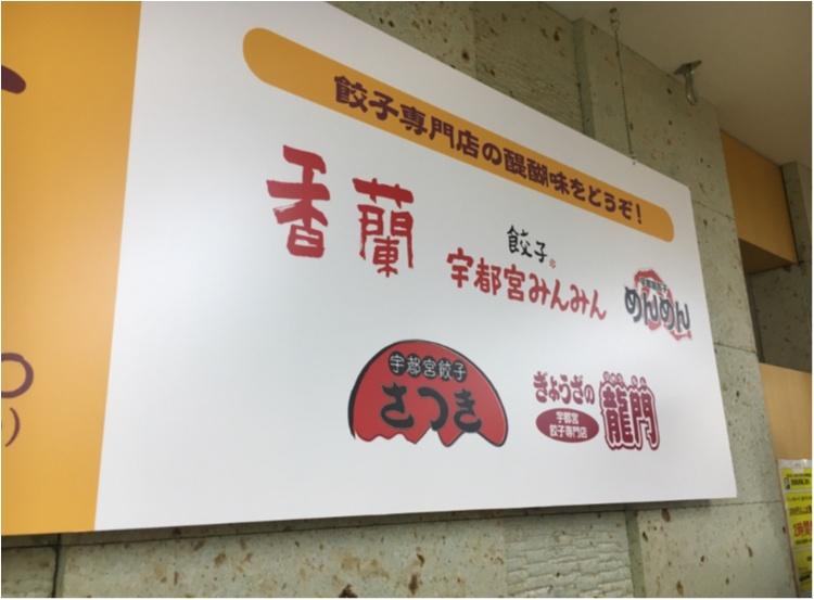 【ご当地モア♡関東】宇都宮で餃子三昧!暑さに負けない餃子とビールの最強コンボ♡♡_2