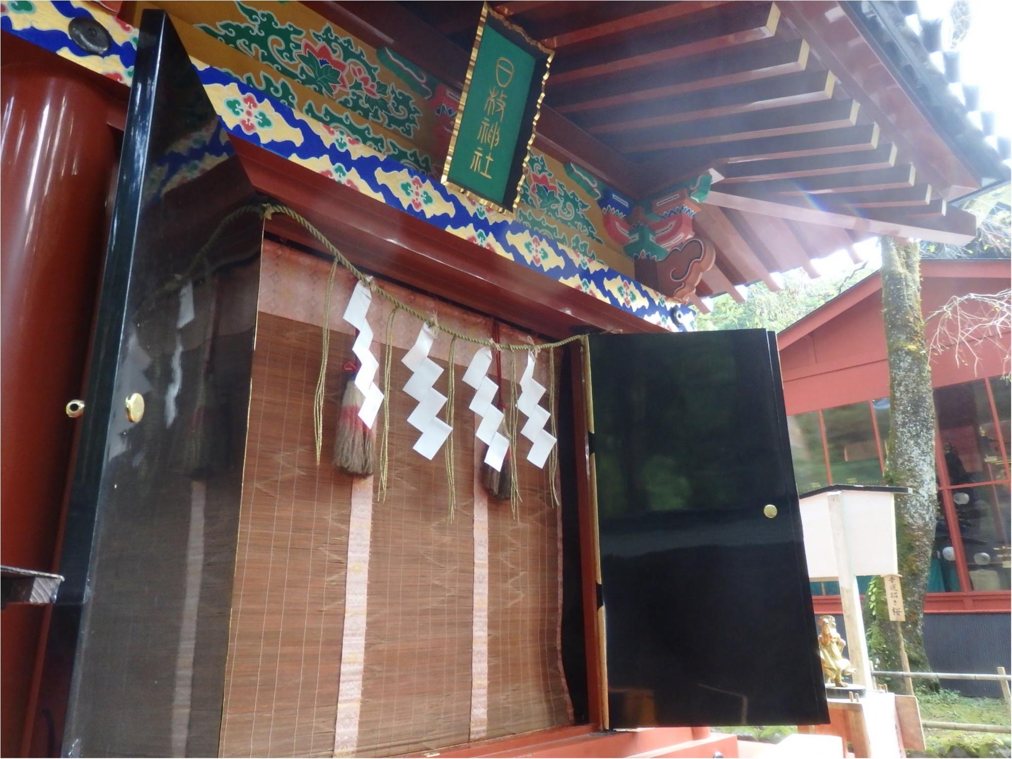 【知らなかった!】日本一楽しめる神社へ潜入してみた_29