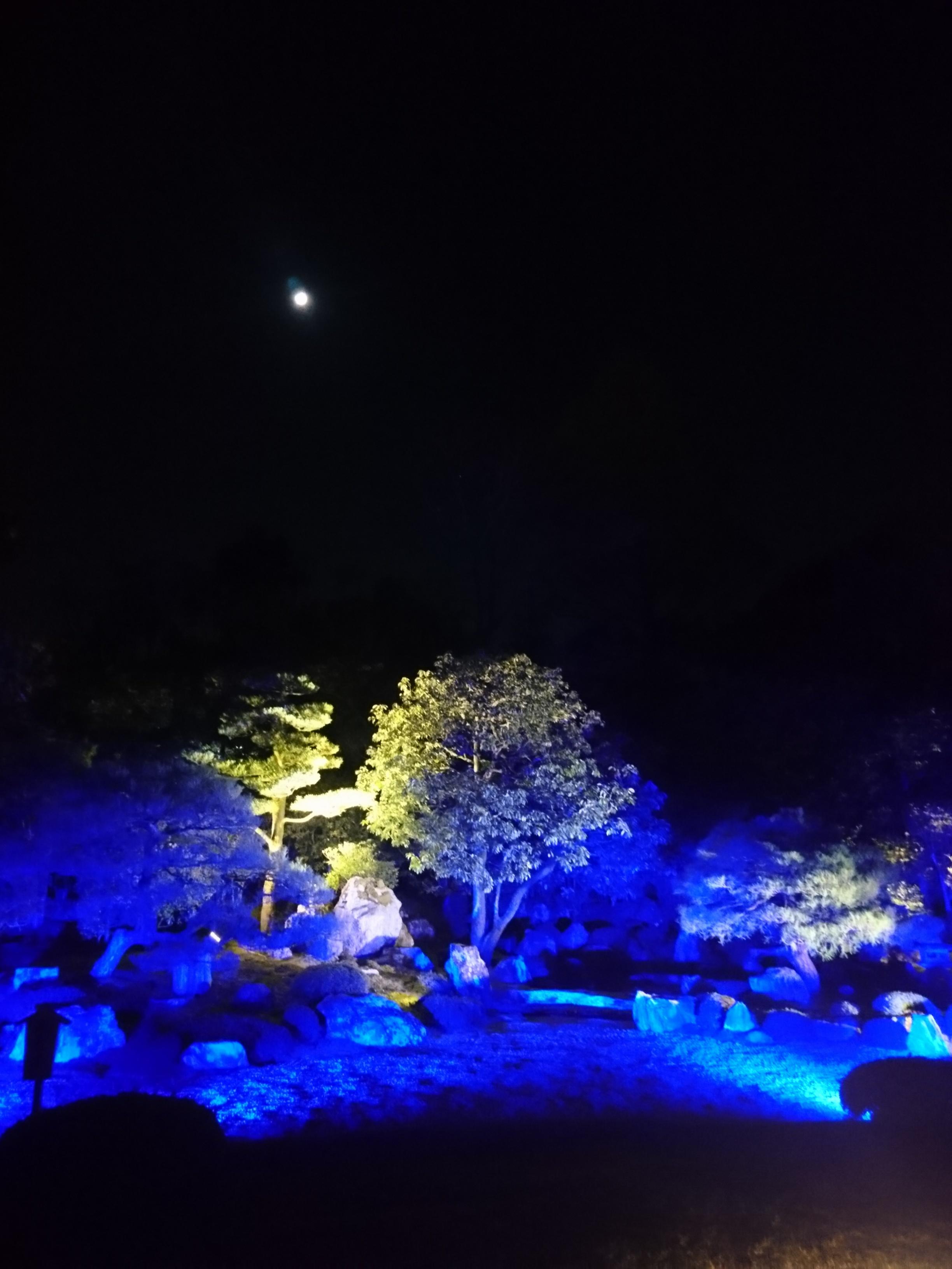 ≪京都・知恩院≫2年ぶり特別公開&ライトアップされた三門は圧巻☆_2