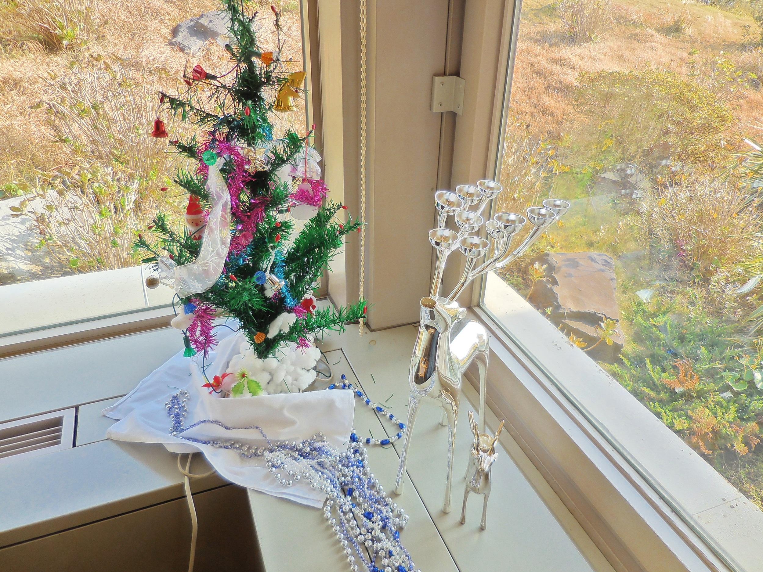 【鎌倉】クリスマスアフタヌーンティに行ってきました♡_2