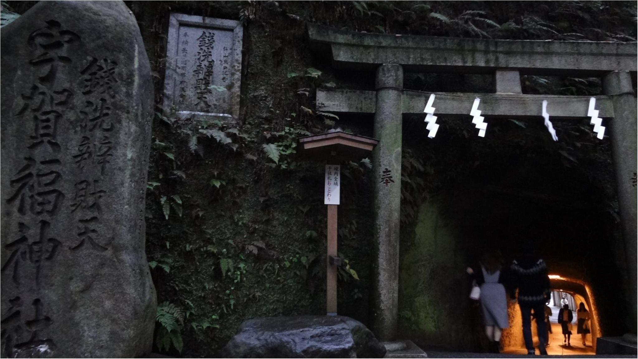鎌倉にも紅葉の季節がやってきた♡11/20時点で見頃のオススメ紅葉スポットをご紹介✨≪samenyan≫_1