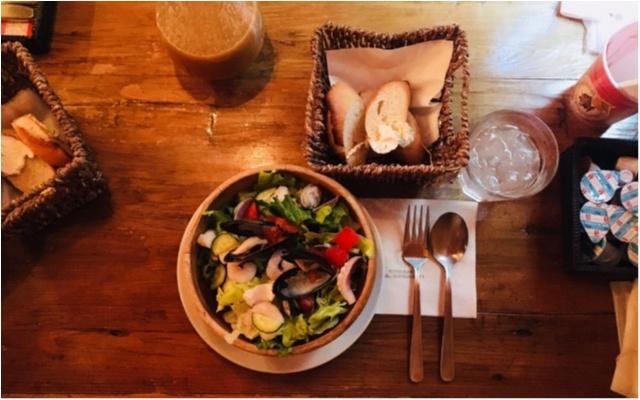 外食続きの生活に食べるビタミン【インナービューティー】サラダランチでうちからキレイに♡_1