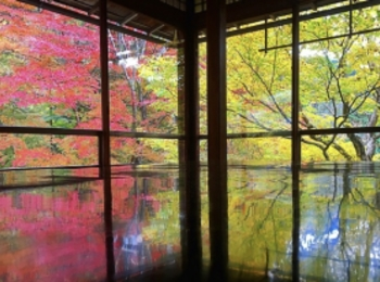 【女子旅におすすめ】京都行くなら紅葉!♡フォトジェニックな穴場スポット紹介6選♡