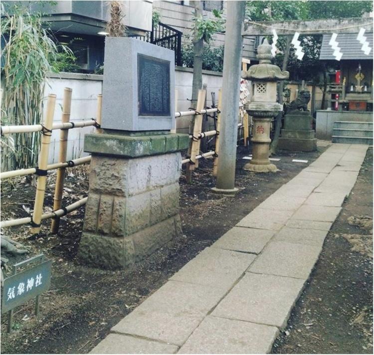 【プレ花嫁】全国で唯一♡お天気の神様がいる「氷川神社」で晴天祈願!@高円寺_2