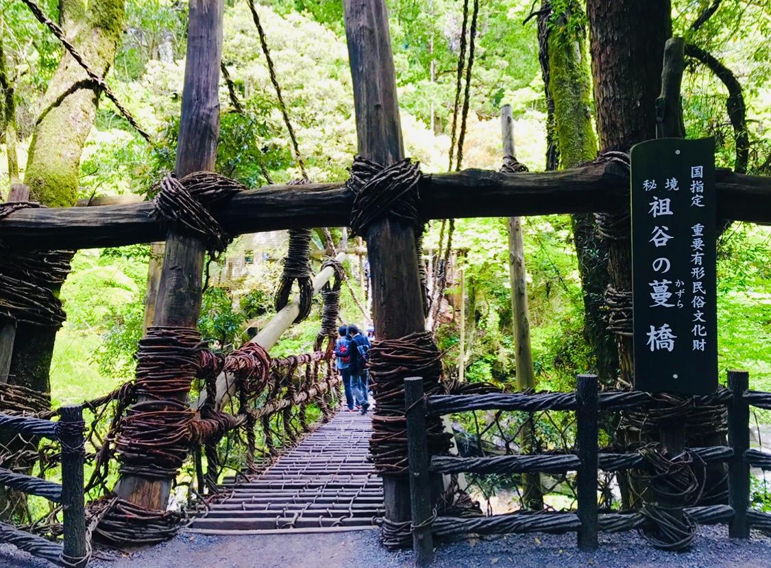 【女子旅におすすめ】徳島県に来たら外せない!癒しの絶景スポット《祖谷のかずら橋》★_2