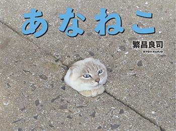 猫好き必見の写真集『あなねこ』が癒し度抜群! 愛らしい姿がずらり♡ 【おすすめ☆本】