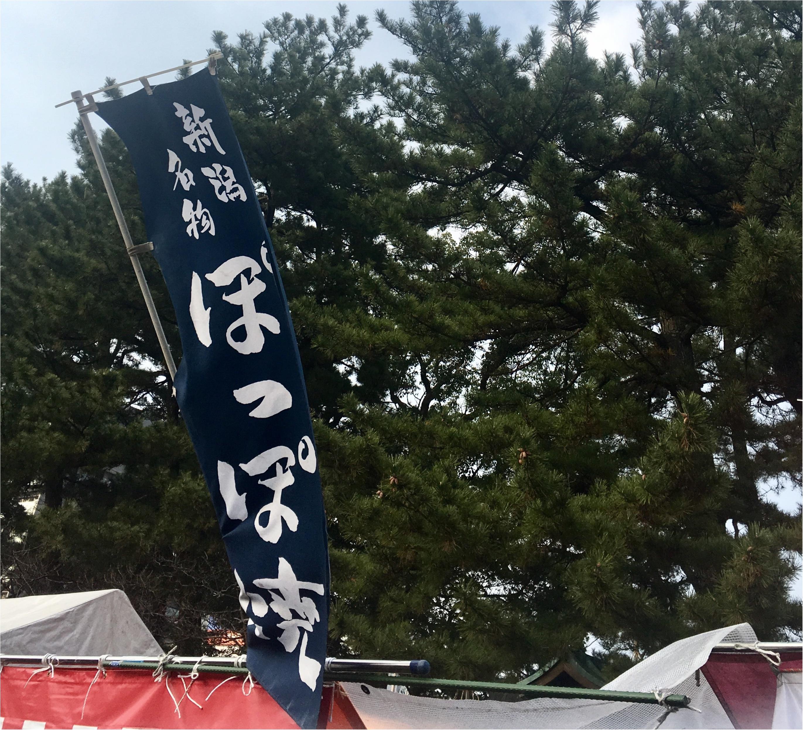 【旅行▶グルメ】もう東京駅でも食べられないあのアイスから定番B級グルメや海の幸まで♡新潟のオススメグルメ_10