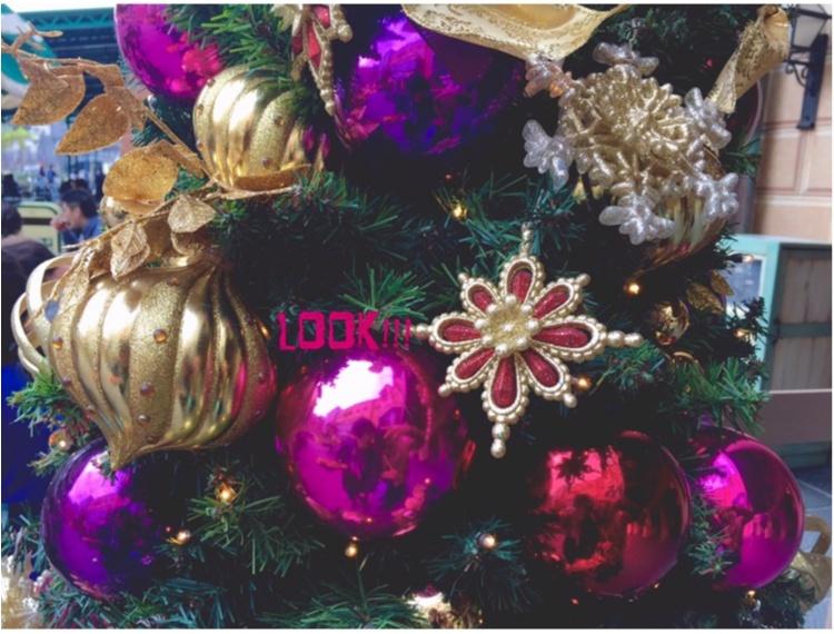 【♥︎♥︎♥︎】ホリデーシーズン真っ只中!クリスマスディズニーでおさめたい写真はこれ♡_9