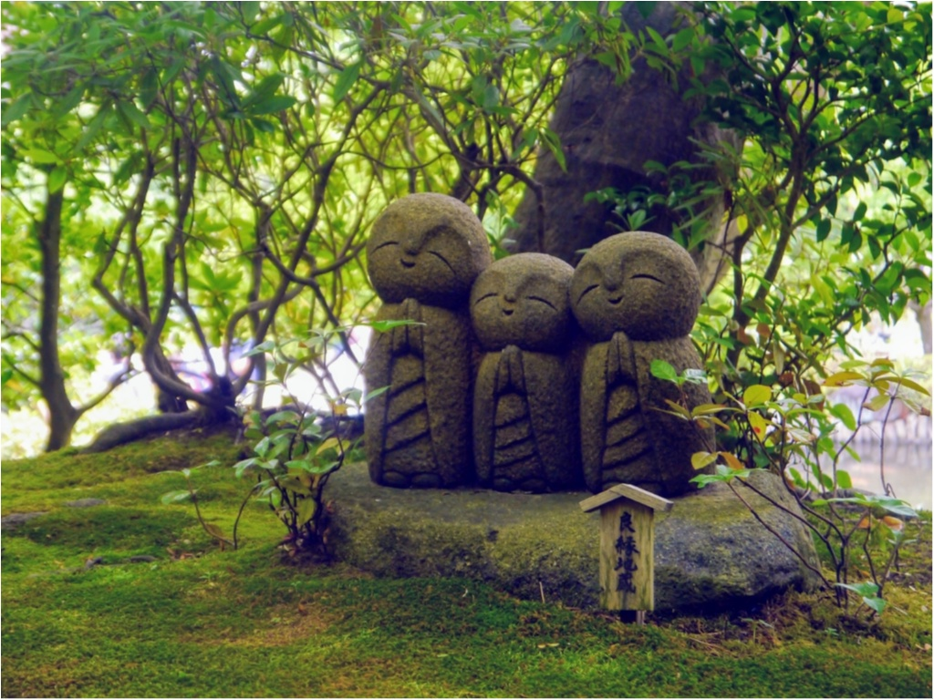 """まだ間に合うかも!?【鎌倉】の """" 紫陽花 """" を観て、心をリフレッシュしてみてはいかがでしょうか?_2"""