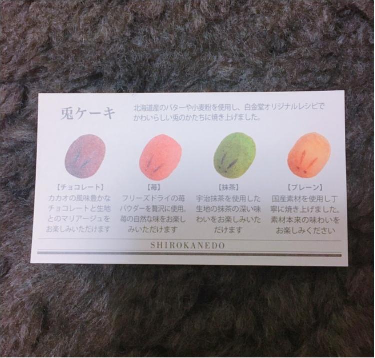 《女子力高めのお土産♡》白金堂(SHIROKANEDO)の兎ケーキ♡_4