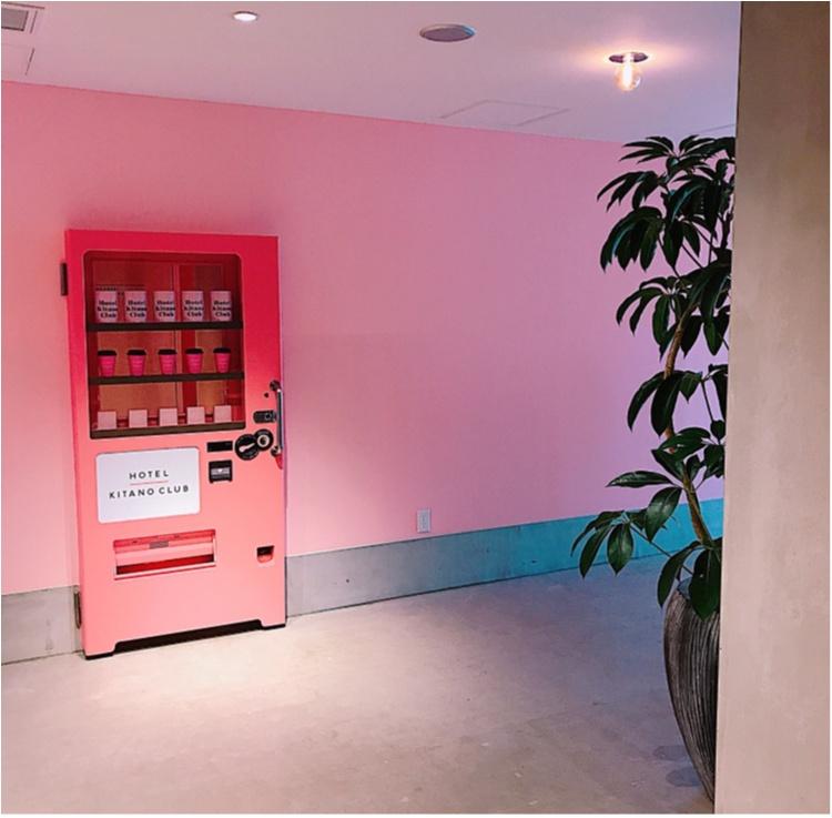 【ご当地MORE♡神戸】HOTEL KITANO CLUBがフォトジェニックすぎる!✨_8