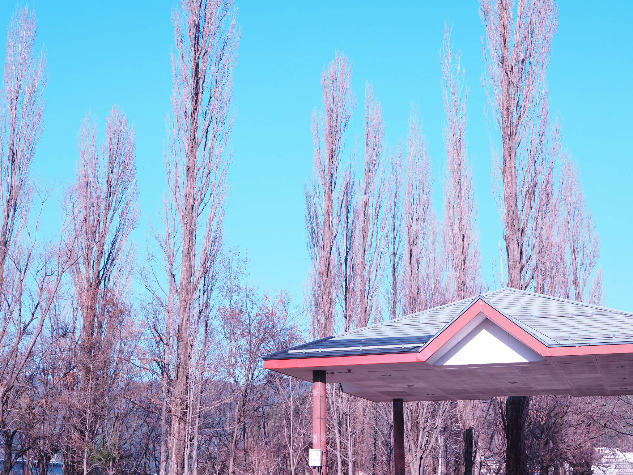 【#河口湖合宿】富士山の目の前のペンションでわいわい一泊旅♩〜グルメ・観光編〜_16