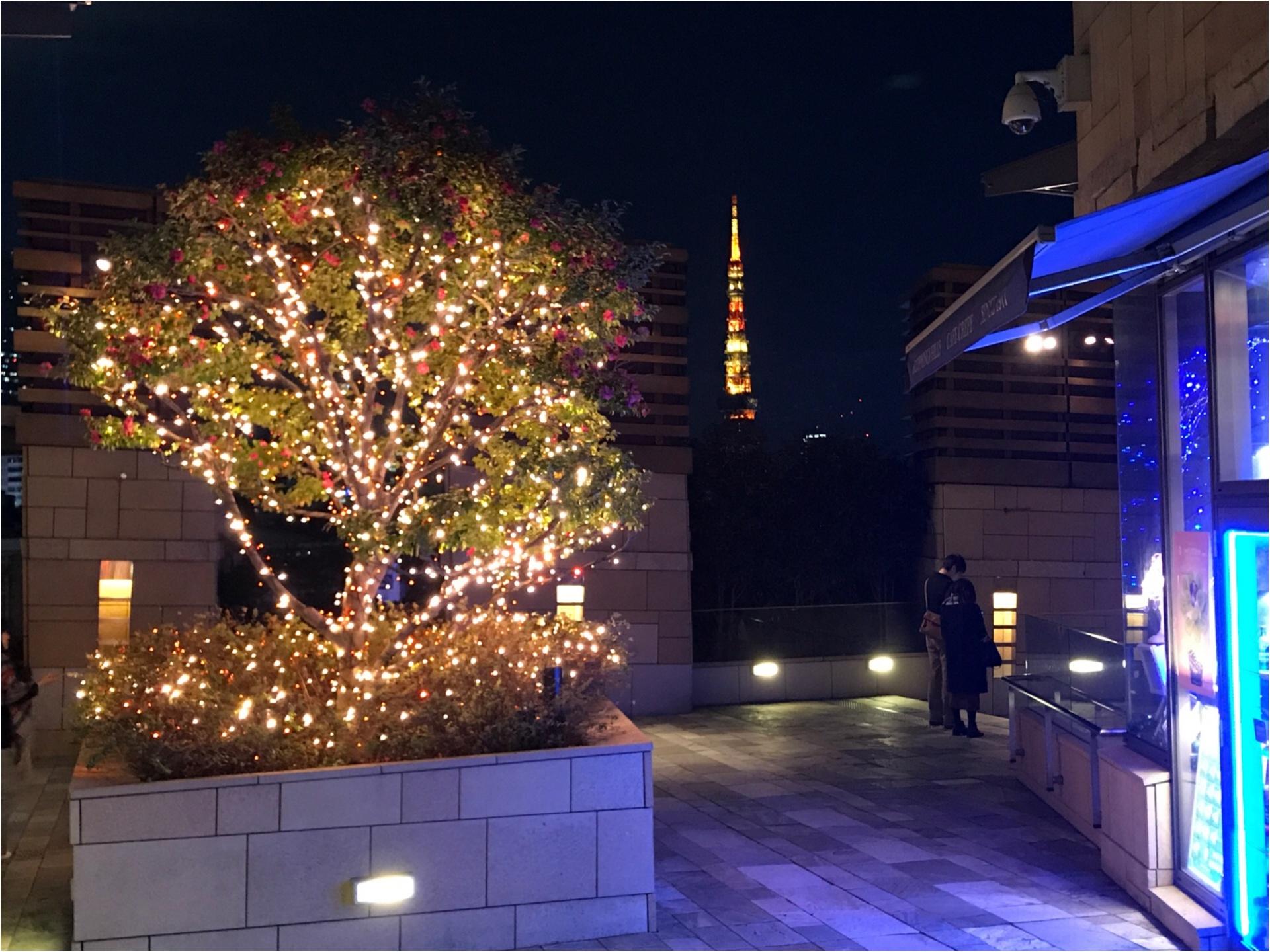 六本木の冬の風物詩【けやき坂イルミネーション】東京タワーとのコラボが幻想的♡_4