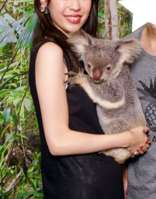 【オーストラリア♡ケアンズ】コアラに会いに行きました!_3
