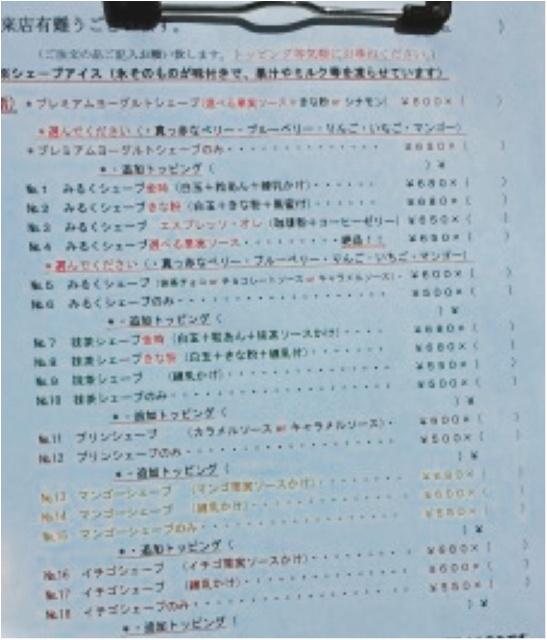 甲佐町のかき氷屋さんで味わう、ふわっふわな絶品かき氷〜〜!【#モアチャレ 熊本の魅力発信!】_3