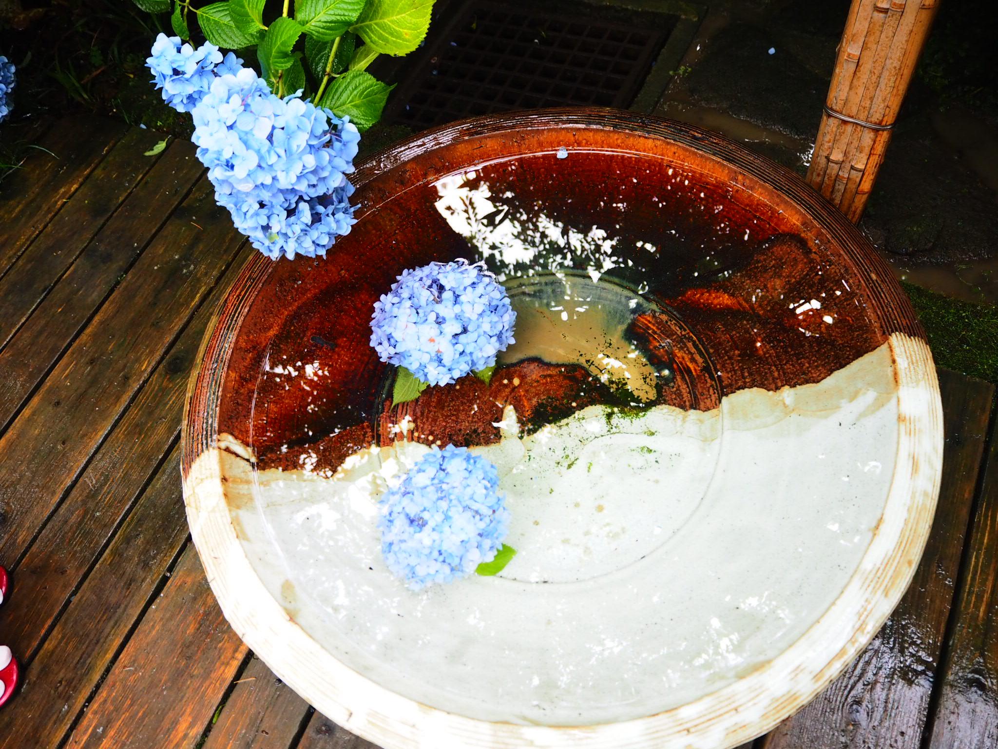 夏着物で鎌倉女子旅♡  紫陽花がとっても綺麗でした♡_19