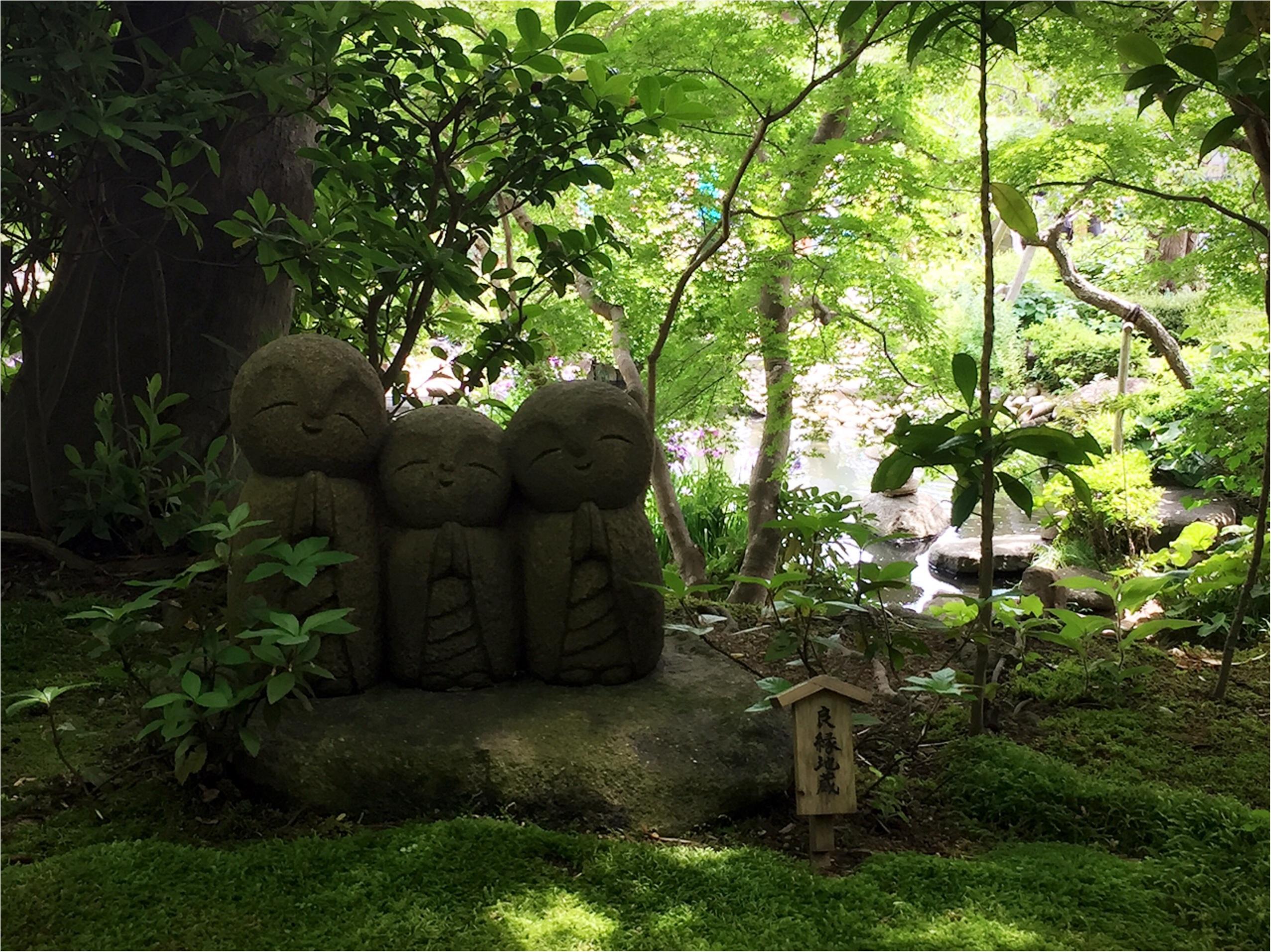 週末鎌倉さんぽ。今が見頃!紫陽花を見に長谷寺へ行ってきました♡*_2