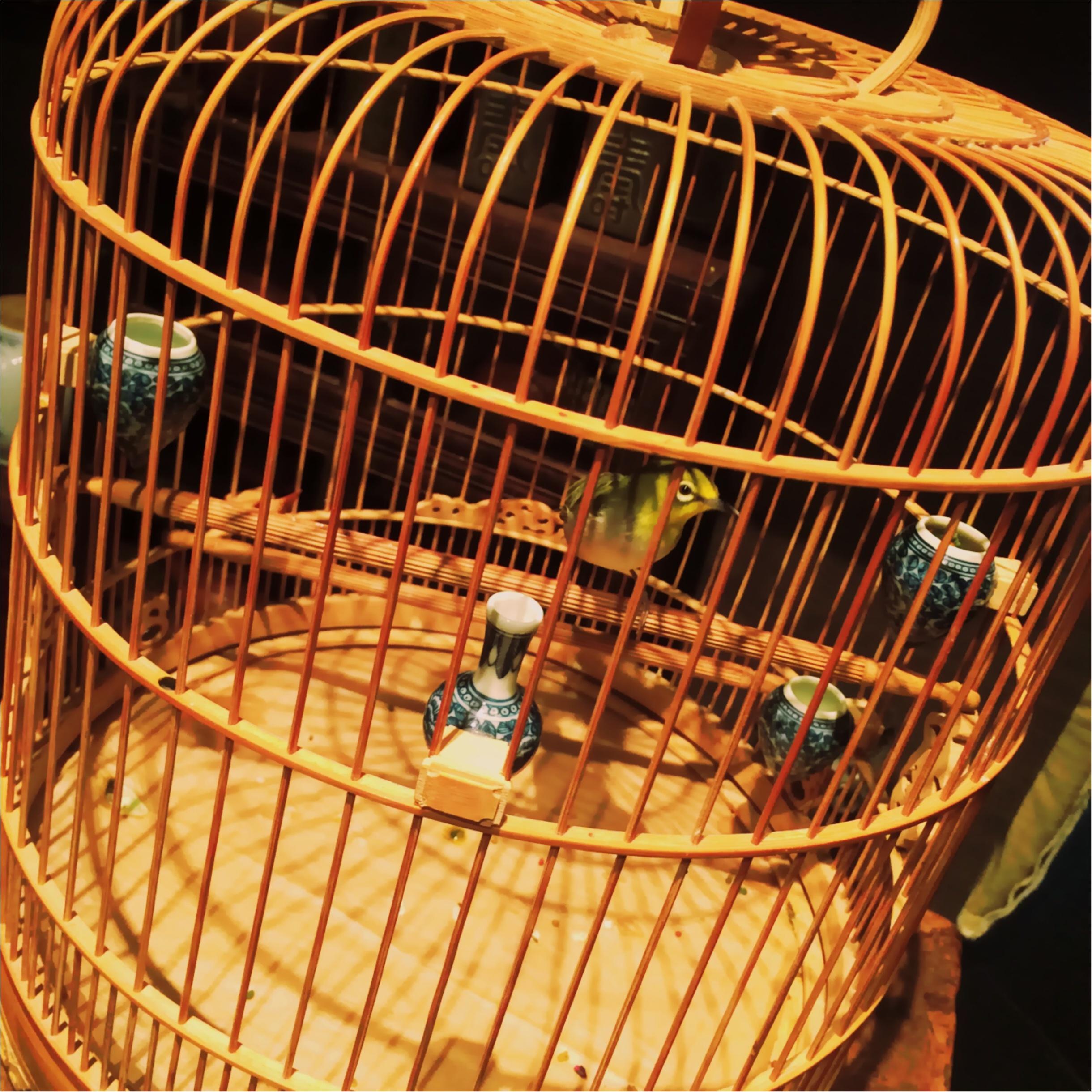 ★台湾といえばお茶!真っ赤な缶が目印♡140年以上の歴史を持つ老舗茶荘って?★_5