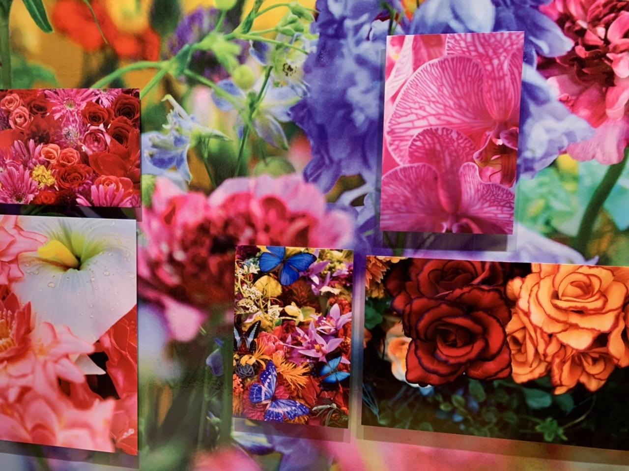 11/14(日)まで!上野の森美術館で開催中の蜷川実花展に行ってきました!_6
