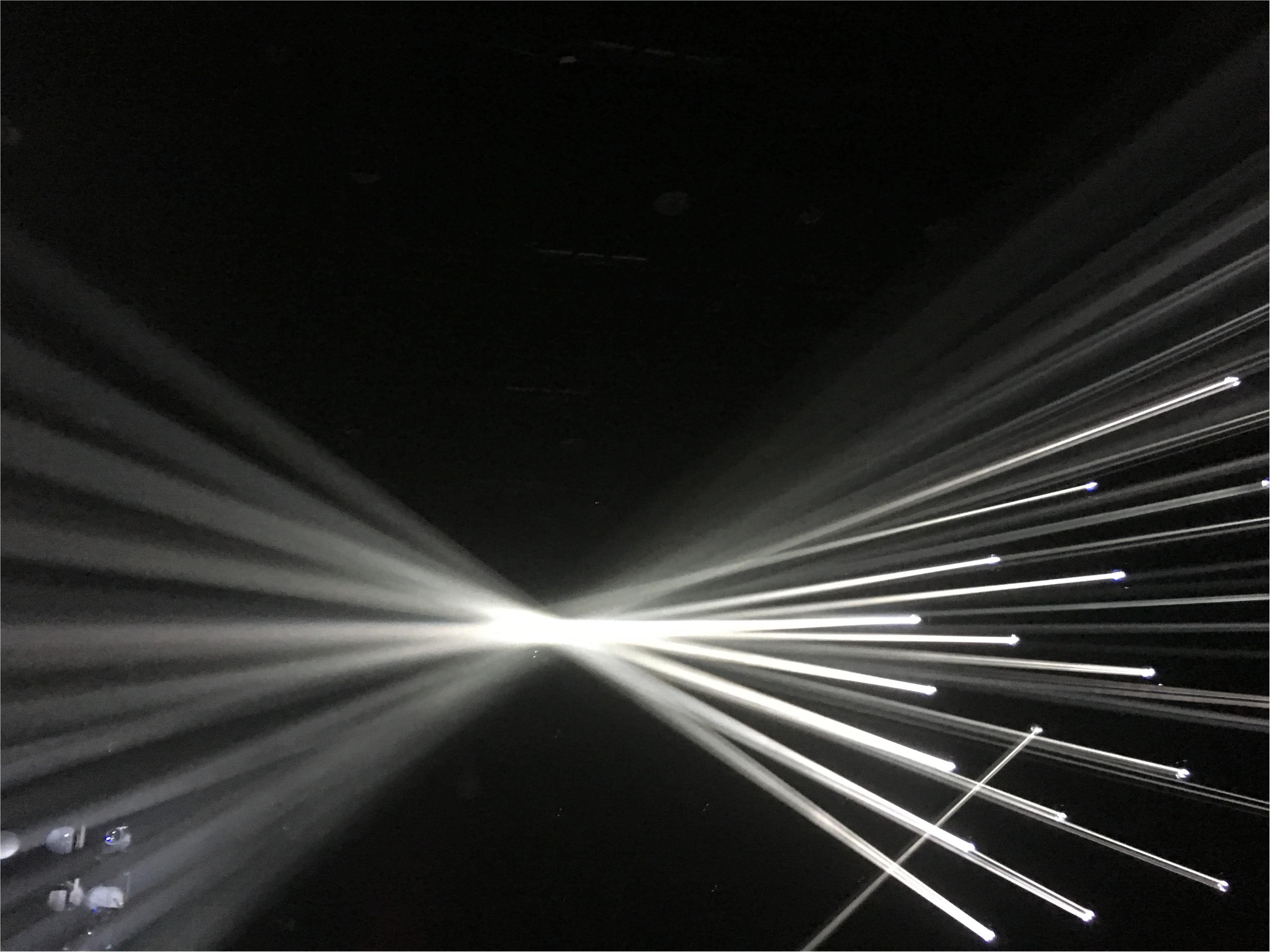 光に包まれる感覚が新鮮!バイトル presents チームラボジャングル - Art Night と学ぶ!未来の遊園地_2