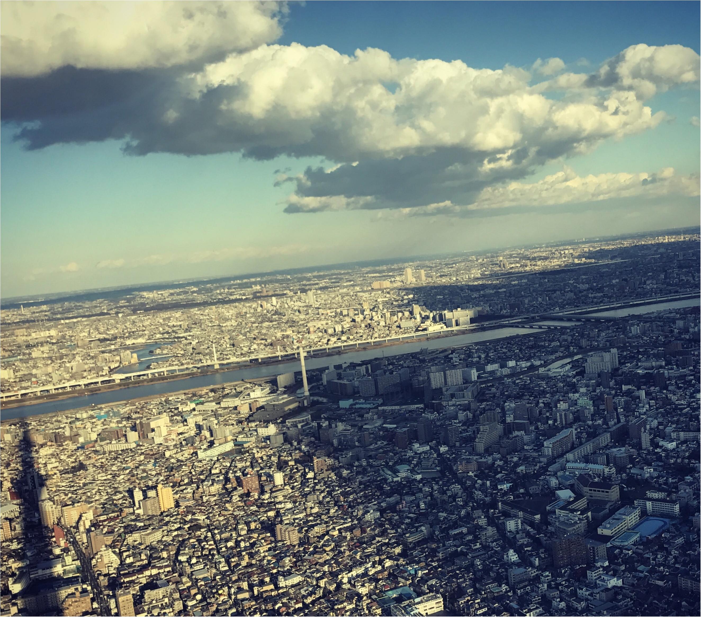東京散歩~スカイツリー&すみだ水族館~_4