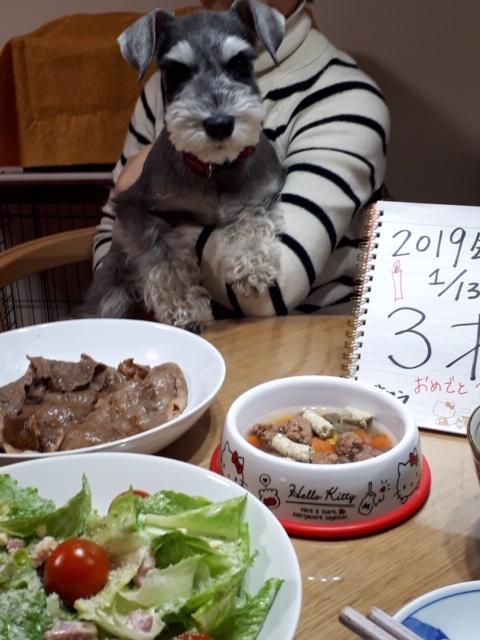 【今日のわんこ】サクラちゃん、3才の誕生日会でのひとコマ★_1