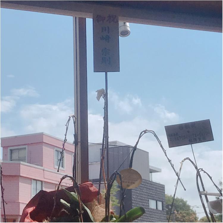 【ご当地MORE♡福岡】福岡に来たら1度は行ってほしいパスタ屋さん✨_4