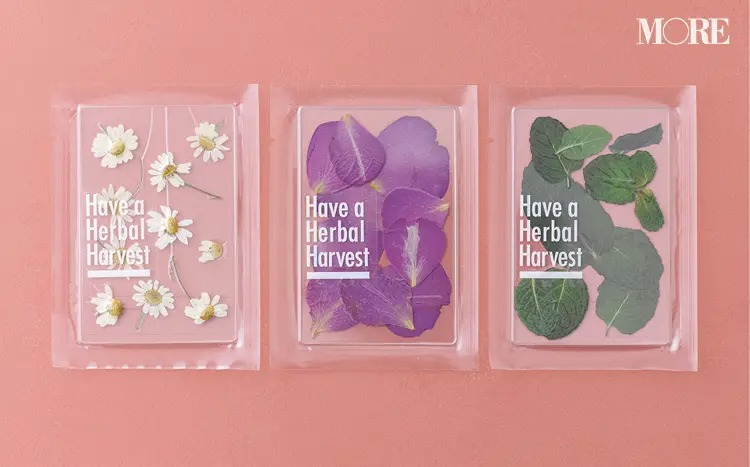 Have a Herbal Harvestのハーブティー