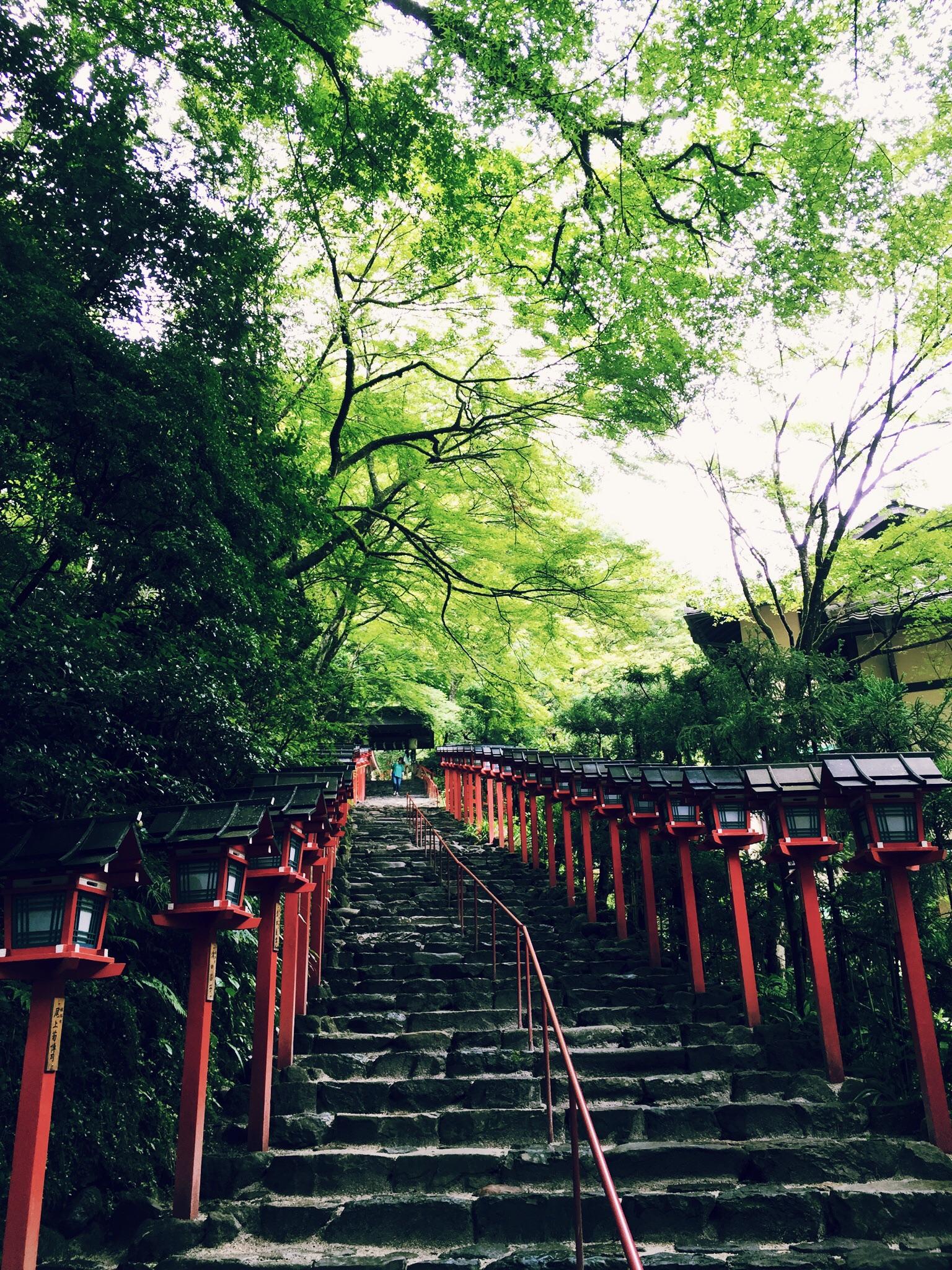 貴船神社で茅の輪くぐり。2015年は、あと半年もあります!byマツジュン_1