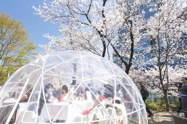 巨大なボトルはなんと万華鏡♡ 『東京ミッドタウン』の可愛すぎる桜イベント「CHANDON Blossom Lounge」【#桜 2019 9】_6