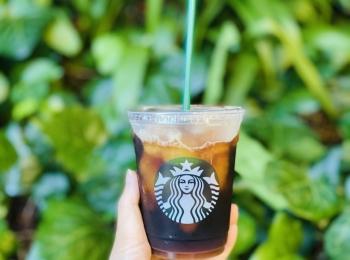 【スタバ新作】夏スタバはコレ!《コールドブリューコーヒーフローズンレモネード》が美味しすぎ♡