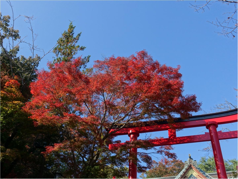 《日帰りデート》気軽に行ける高尾山で秋を満喫!彼とのリンクコーデは【UNIQLO】のあのアイテム❤️_1