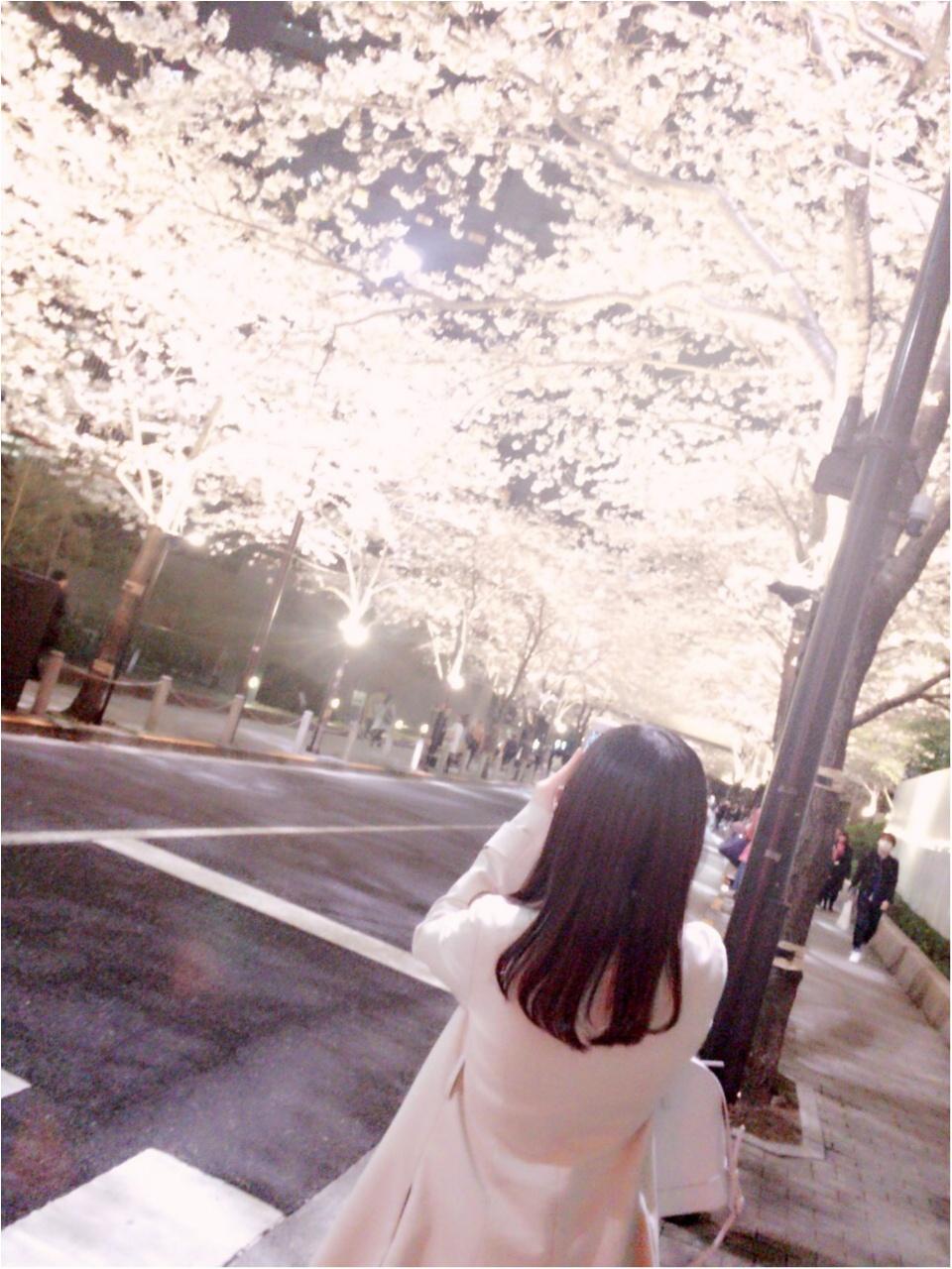 夜桜はしごしました♡六本木〜千鳥ヶ淵_1