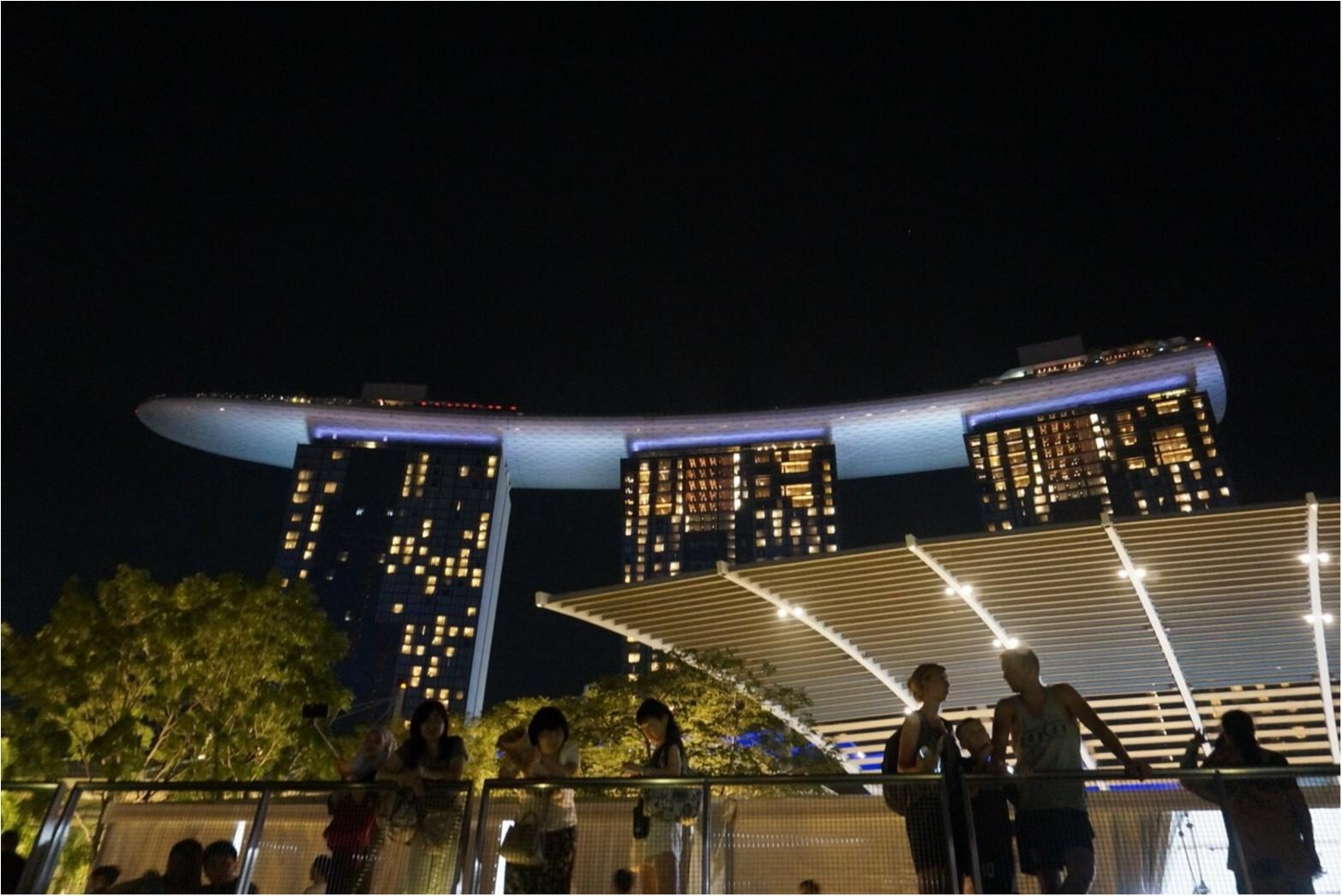 シンガポール女子旅特集 - 人気のマリーナベイ・サンズなどインスタ映えスポット、おいしいグルメがいっぱい♪_18