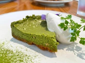 《ギルトフリー》ヴィーガンカフェでいただく絶品!濃厚抹茶チーズケーキ