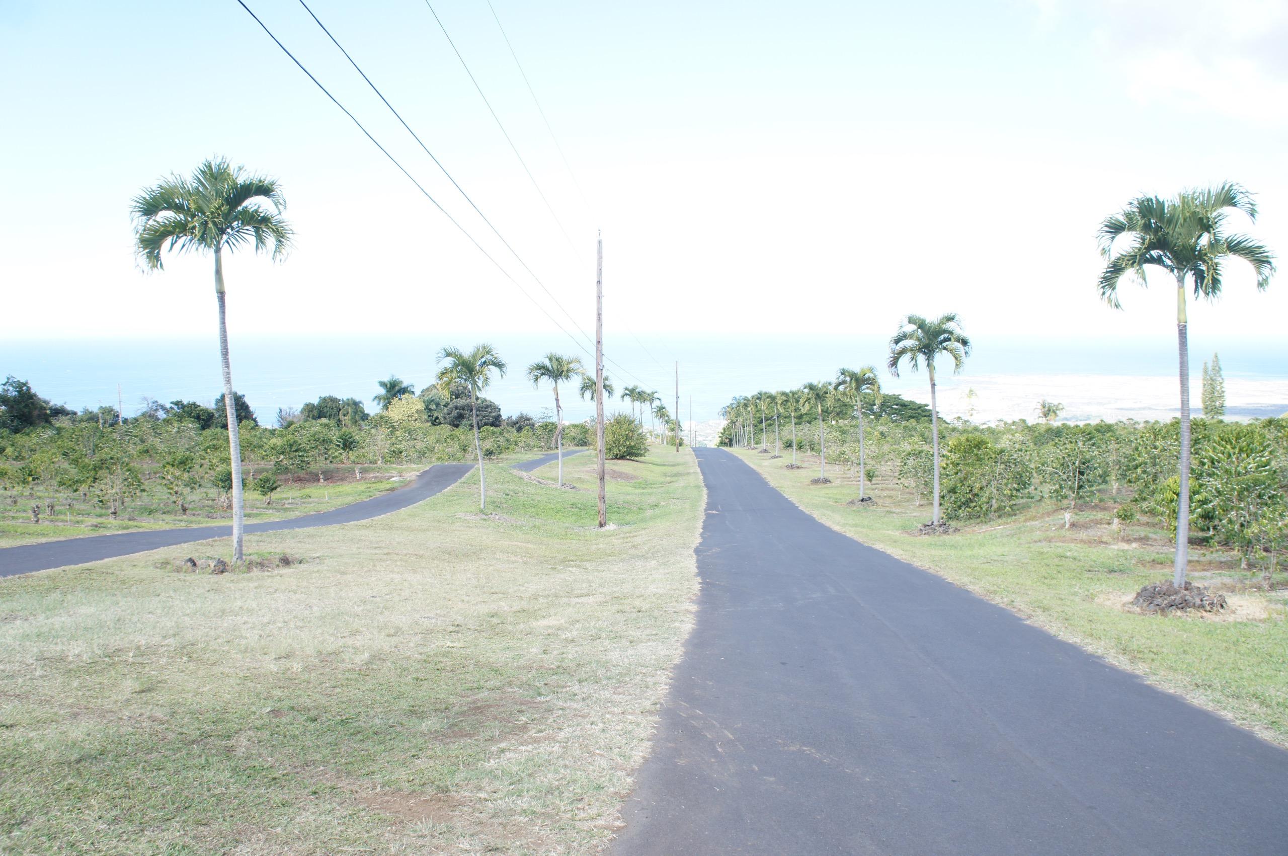 《#ハワイ女子旅》絶対食べたい❤️【UCCハワイ直営農園】で食べられるコナコーヒーアイスクリーム☻_2