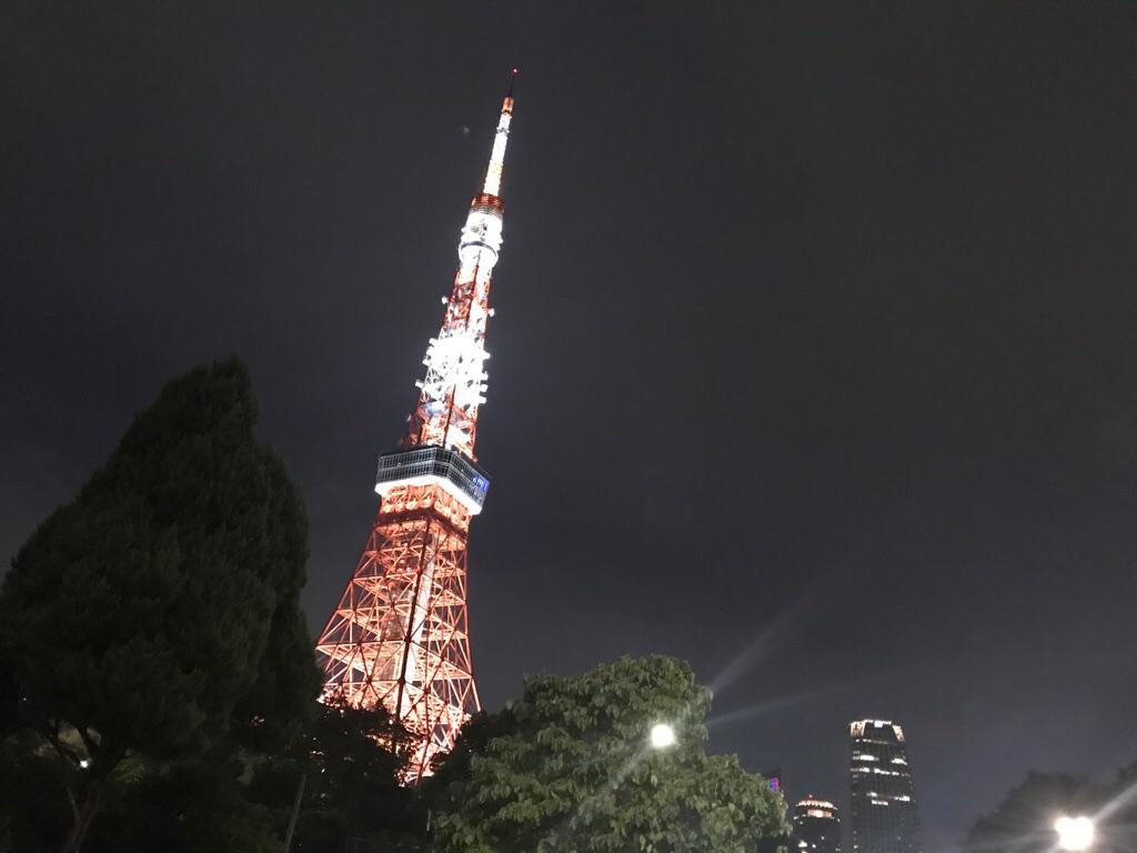 【にしのあきひろ 光る絵本展 in 東京タワー】色と光の美しさ、全世代を惹きつける魅力とは。_11