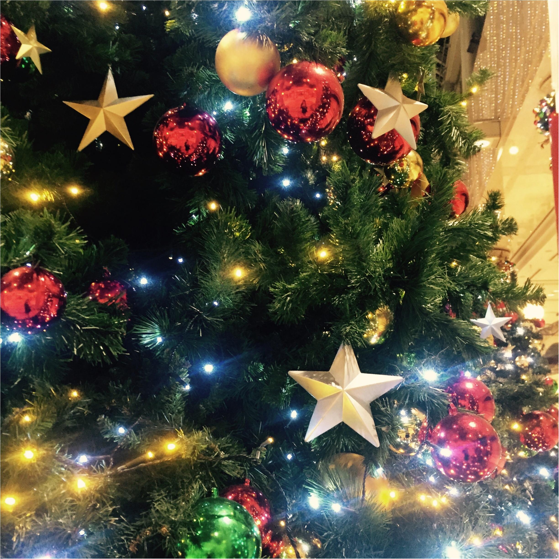 Xmas♡クリスマスツリー巡り♡_5