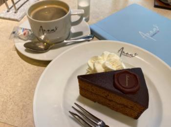 【カフェ難民必見☆】渋谷で本場のザッハトルテが味わえる穴場カフェをご紹介