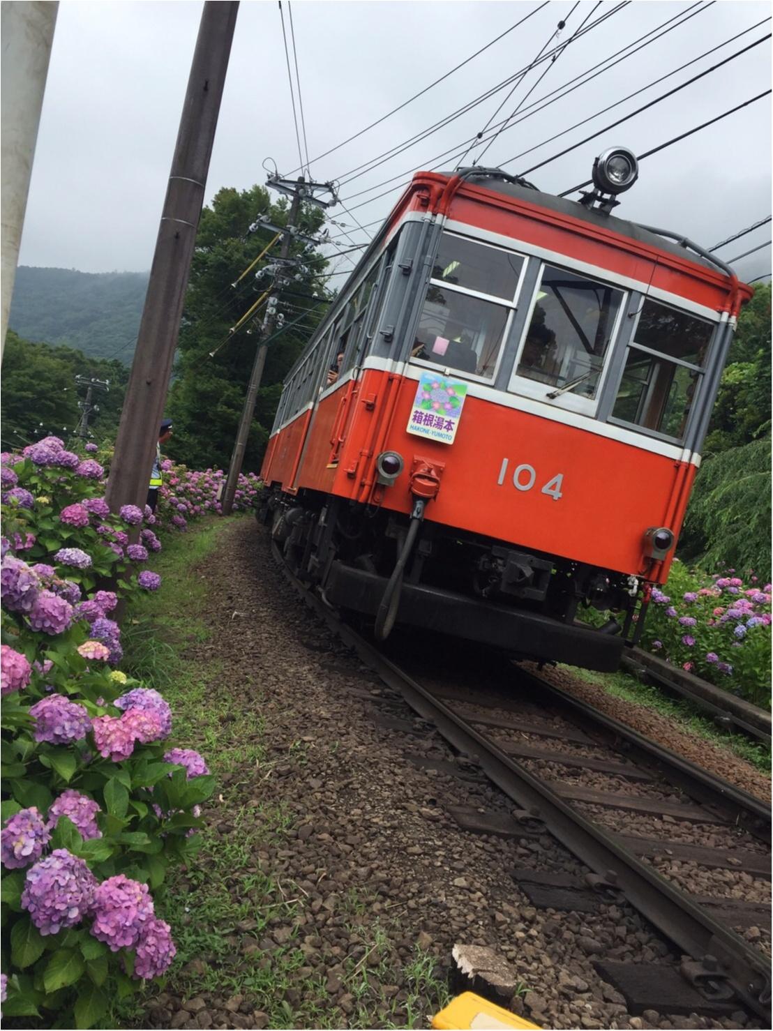 箱根女子旅特集《2019年版》- おすすめグルメ、人気の星野リゾート、パワースポットまで!_37