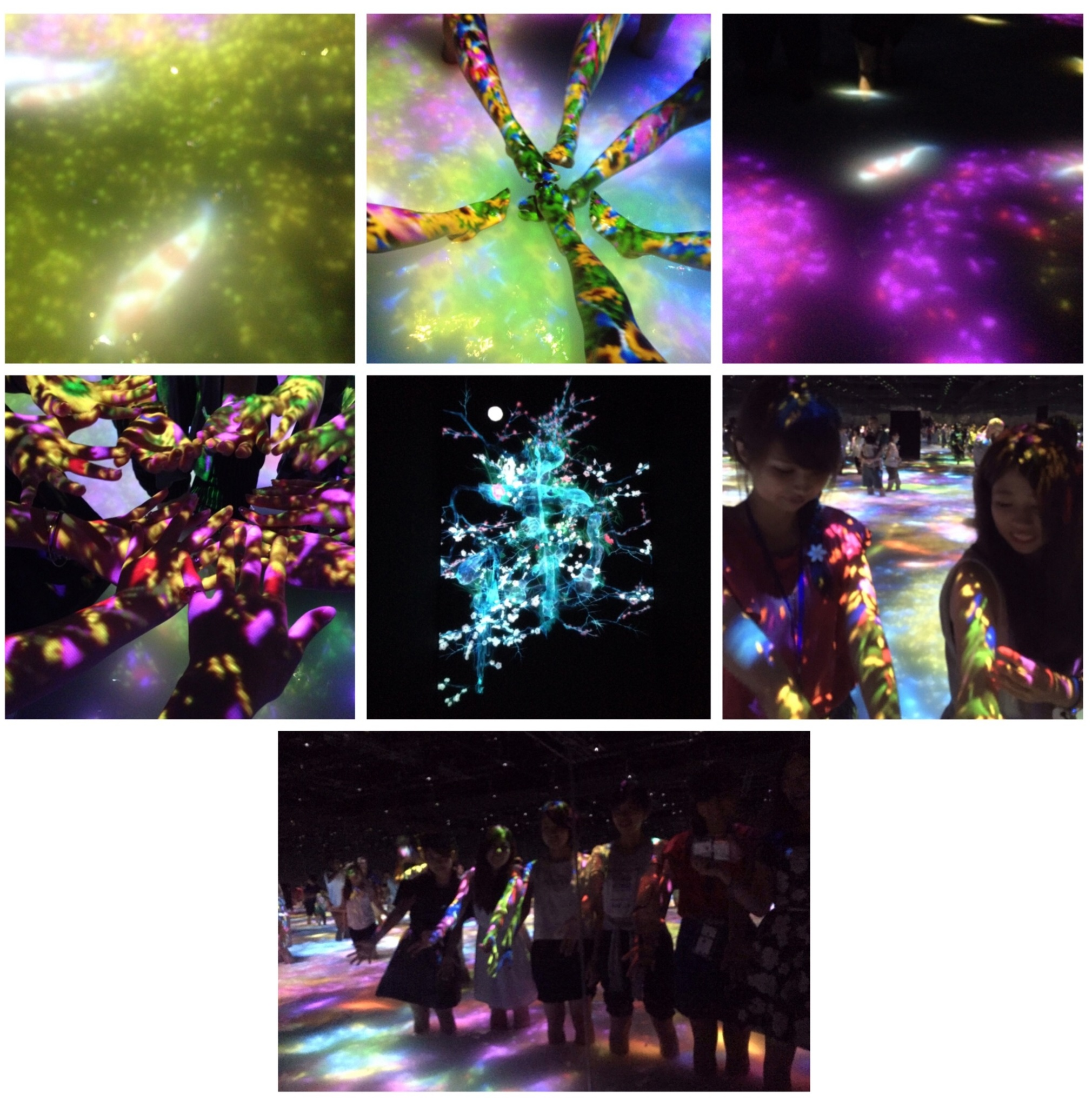超体感・大型アトラクション‼️場内で湧き上がる大歓声が物語るデジタルアートの世界へ♬_8