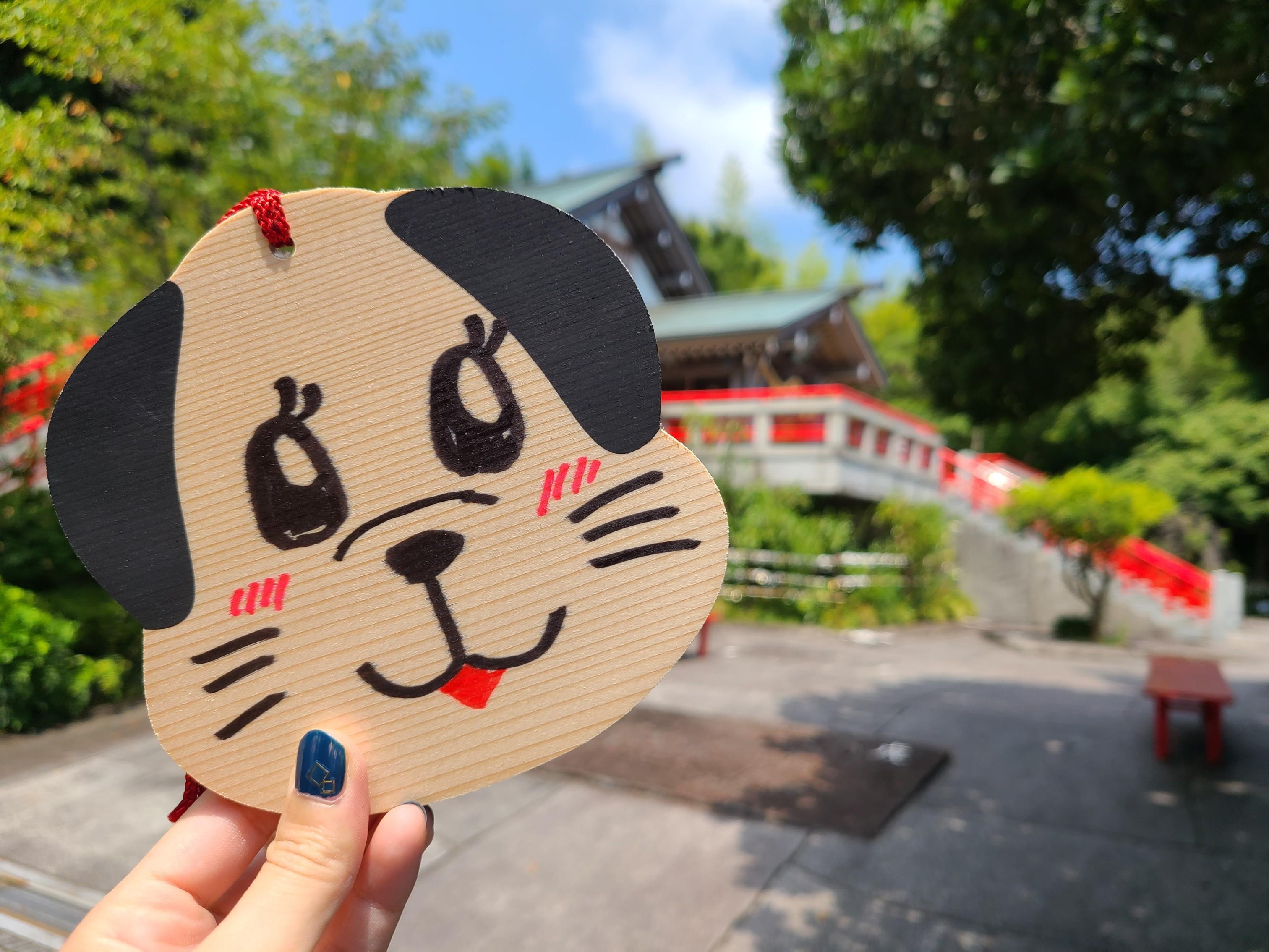 【女子旅におすすめ】静岡県・伊東市!大自然&星野リゾート界で楽しむのんびり旅☆_9